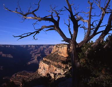 Grand-Canyon-2002-0231