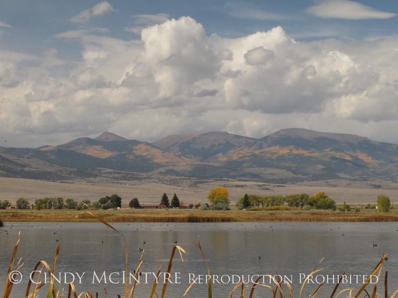 Monte Vista NWR CO views (7)