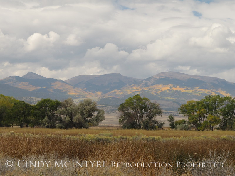 Monte Vista NWR CO views (2)