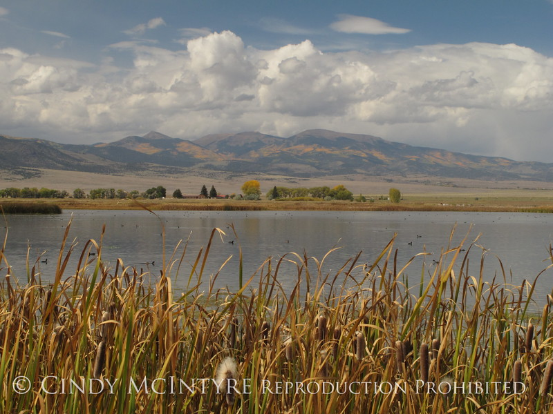 Monte Vista NWR CO views (8)
