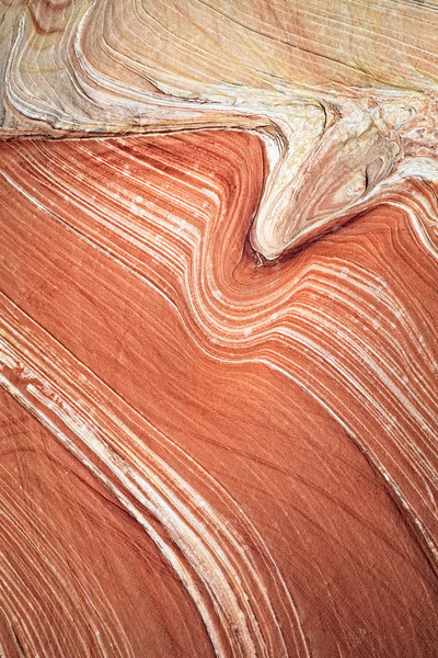 The Wave Detail <br><br>Coyote Buttes <br>Arizona/Utah Border <br>(5II2-07488)