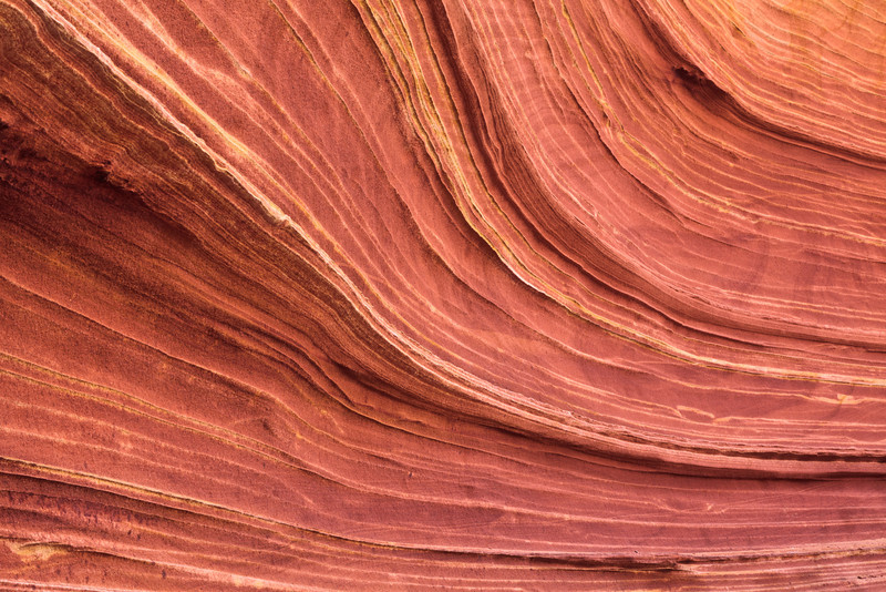 The Wave Detail <br><br>Coyote Buttes <br>Arizona/Utah Border <br>(5II2-07675)