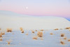 New Year Moonrise<br><br>White Sands National Monument<br>Alamogordo , New Mexico<br>(5II-10898)
