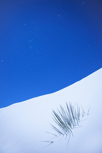 Buried <br /> <br /> White Sands National Monument <br /> Alamogordo, New Mexico <br /> (5II-10828)