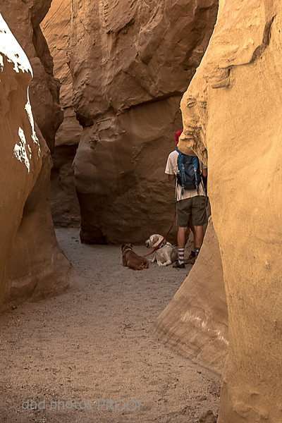 Hiking in a slot canyon, Anza Borrego State Park, CA