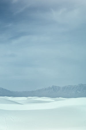 White Sands - Muted<br /> © Sharon Thomas