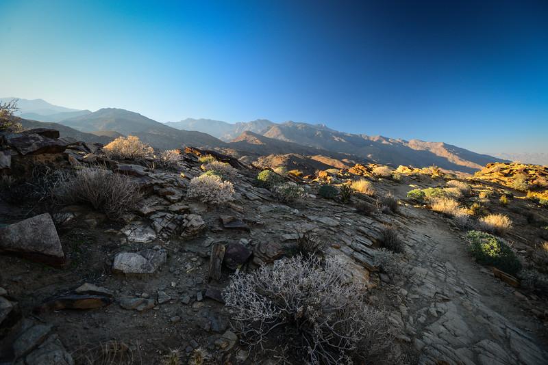 Indian Canyons II