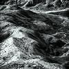 Petrified Forest AZ
