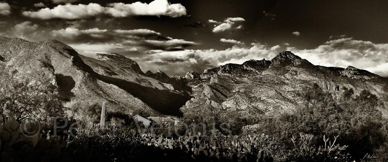 Santa Catalina Mts