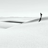 Solitary at White Sands