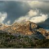 Tucson Mountains near Gates Pass