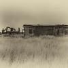 New Mexico Homestead