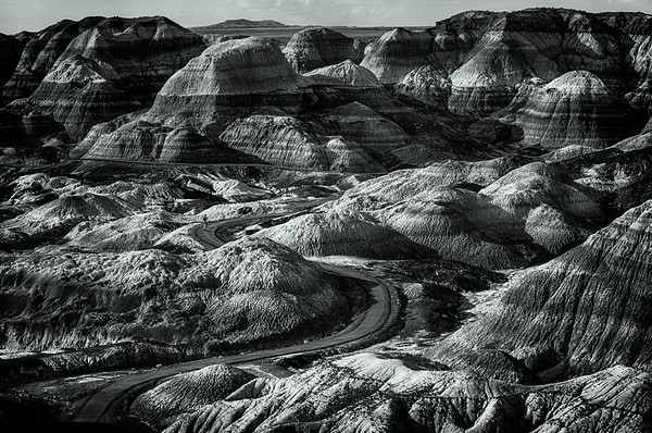 Petrified Forest AZ<br /> © Sharon Thomas
