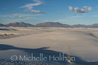 White sands in the morning
