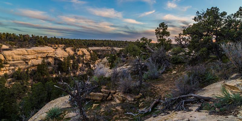Mesa Verde Rim Scene