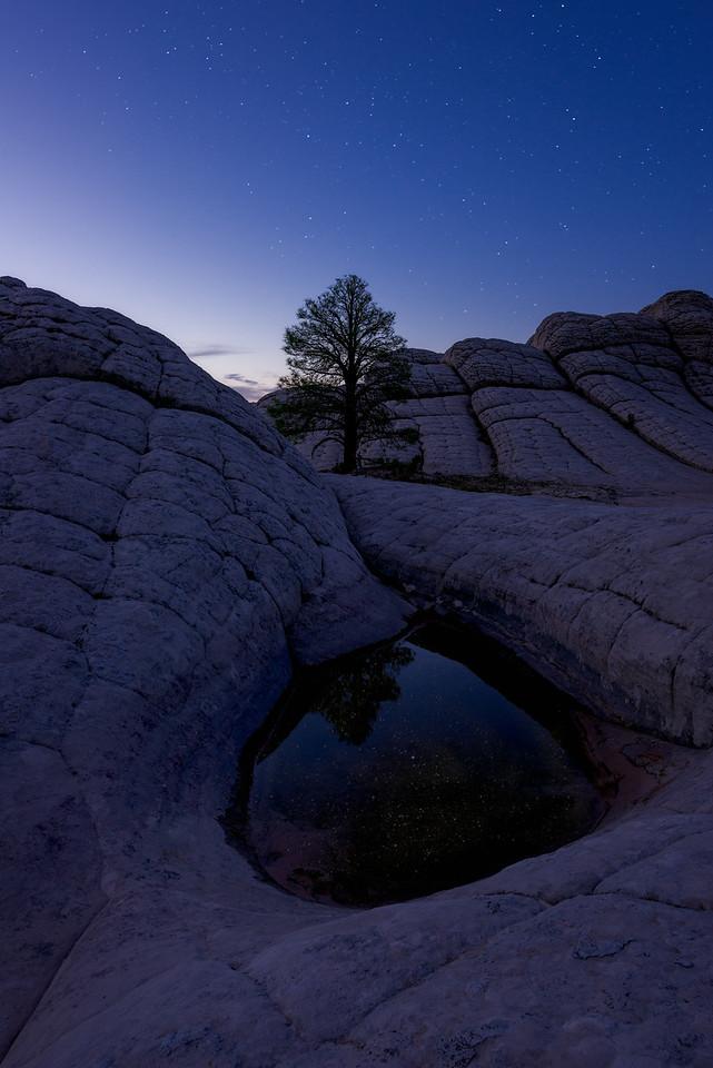 White Pocket, Vermillion Cliffs, Arizona, Landscape, Desert, Sunrise