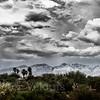 Santa Catalina Mountain