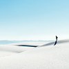 Solitary - White Sands, NM 2<br /> © Sharon Thomas