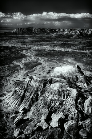 Petrified Forest AZ<br /> © Sharon Thomas