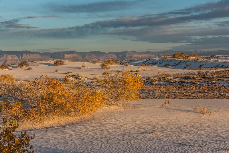 White Sands Sunset Ripples