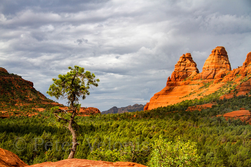 Red Rocks of Sedona, AZ