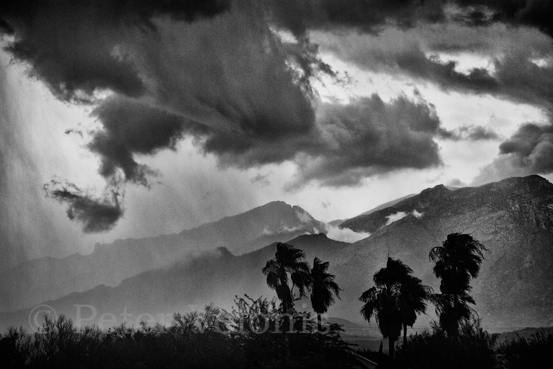 Storm in the Catalina Mts