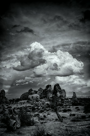 Windows area - Arches National Park, UT<br /> © Sharon Thomas