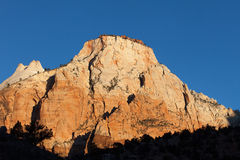 Rock and Shadow, Zion NP