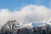 Winter Cottonwoods, Snowy Mountains, and Clouds, Eastern Sierras CA