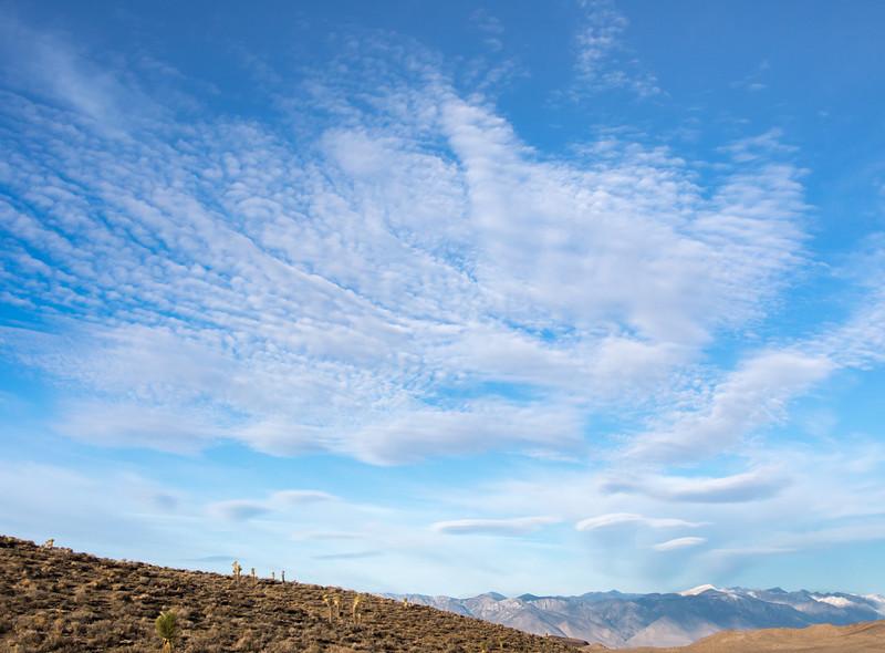 Morning Landscape, Darwin Falls CA