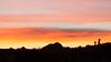 Sunrise Silhouette, Joshua Tree National Park CA