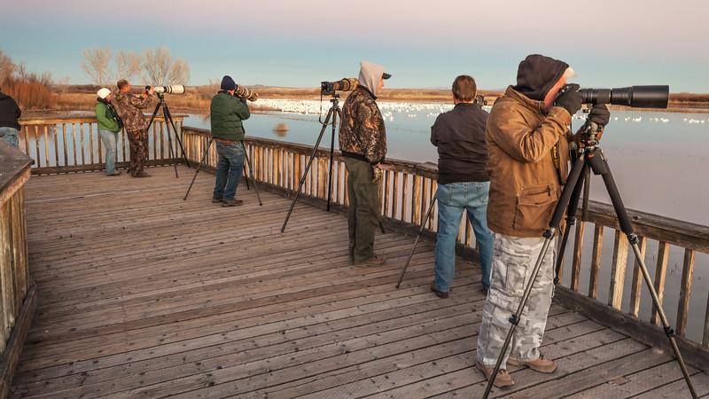 Bird Photographers II, Bosque del Apache National Wildlife Refuge, NM