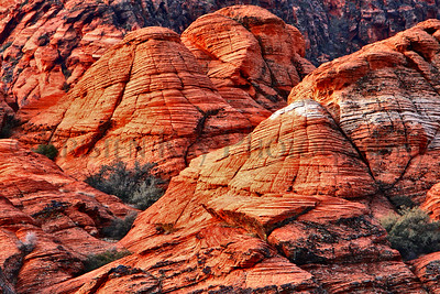 Southwestern USA National and State Parks