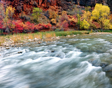 Fall colors along the Virgin River 2