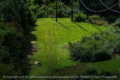 015-deer_landscape-wdsm-13sep19-12x09-009-500-3297