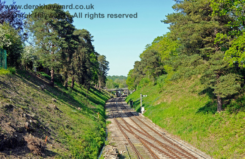 Looking east towards Groombridge Station.  The track on the left (opening into points below the camera) led to the two lifted sidings on the Ashurst spur and to the siding on the former Up line. 29.05.2021 20707
