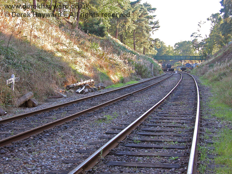 Two years later, this is the view of the run round loop from ground level.  The embankment has obviously been subject to clearance and some large pieces of tree trunk are awaiting disposal.  The sidings can be seen in the distance.  19.09.2005