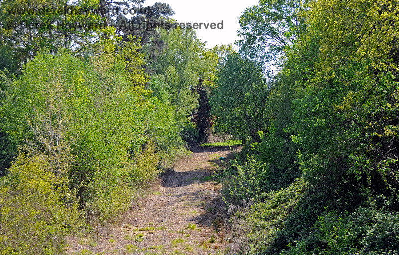 The now abandoned private land that formed the Ashurst spur.  A short distance down the spur (out of shot) a bridge has been removed. 29.05.2021 20706