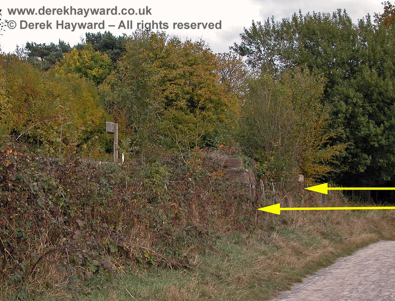 These are the foundations of Ashurst Junction signal box, but they have become quite overgrown and are difficult to see.  If you passed by on the train there would be nothing in view.  19.10.2003