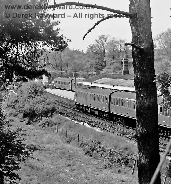 Peeking through the trees at Eridge on Sunday 01.06.1975.   1307 is in the Up Loop (Platform 1) with the 15:33 service to Victoria whilst 1304 is just departing on the Up Main (Platform 2) with the 15:08 service from Uckfield to Tonbridge.  Eric Kemp retains all rights to this image.