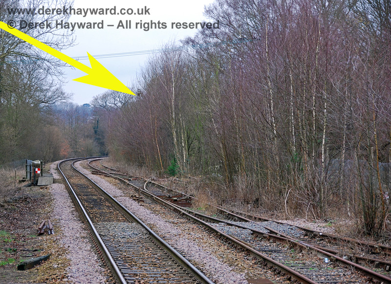 In 2008 it was no longer possible to get a clear picture of the bracket signal, and it had been almost totally swallowed by undergrowth. The top of the signal can just be seen in this picture. 28.01.2008
