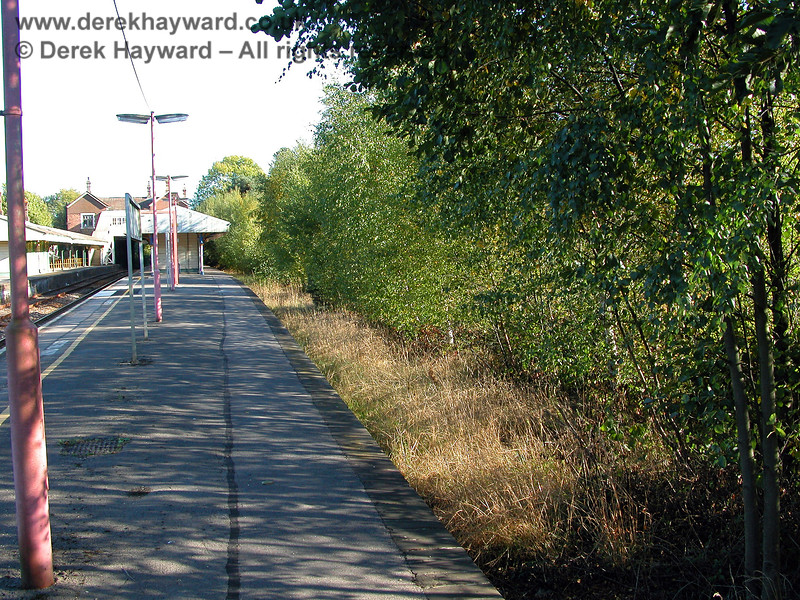 The former platform 1 at Eridge, heavily overgrown, looking south. 05.10.2003