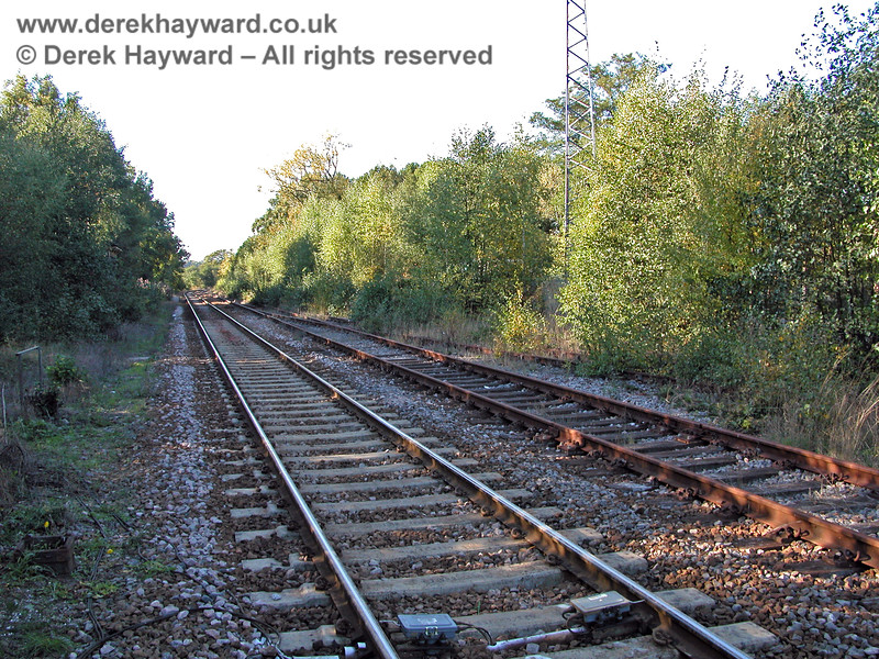 "This image from 2003 looks north from the operational Network Rail platform at Eridge. The scrub shown in 1998 had transformed into fairly mature trees, especially in the ""long siding"", and on the curve in the distance the trees are not far from the Network Rail line.  05.10.2003"