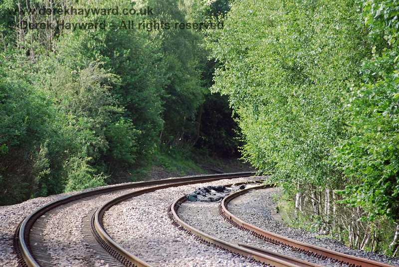 Looking north from Forge Farm Crossing on the same day but with a longer lens.  The trees on the right of the picture appear to be foul of the Spa Valley line and there is debris in the centre of their track. The line was not then operational.  22.06.2008