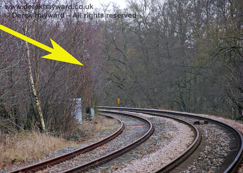 Looking south from Forge Farm Crossing, an old signal post is almost concealed in the bushes. 28.01.2008