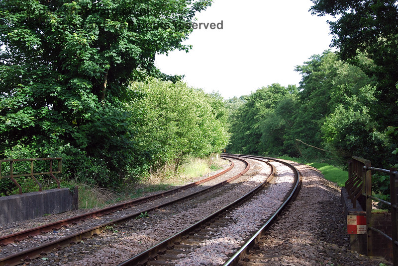 A view south from Forge Farm Crossing in the summer of 2008 illustrates how difficult it was to retain satisfactory sight lines at the crossing with the extensive growth in the area.  The trees on the left appear to be foul of the Spa Valley line, which was not then operational.  22.06.2008