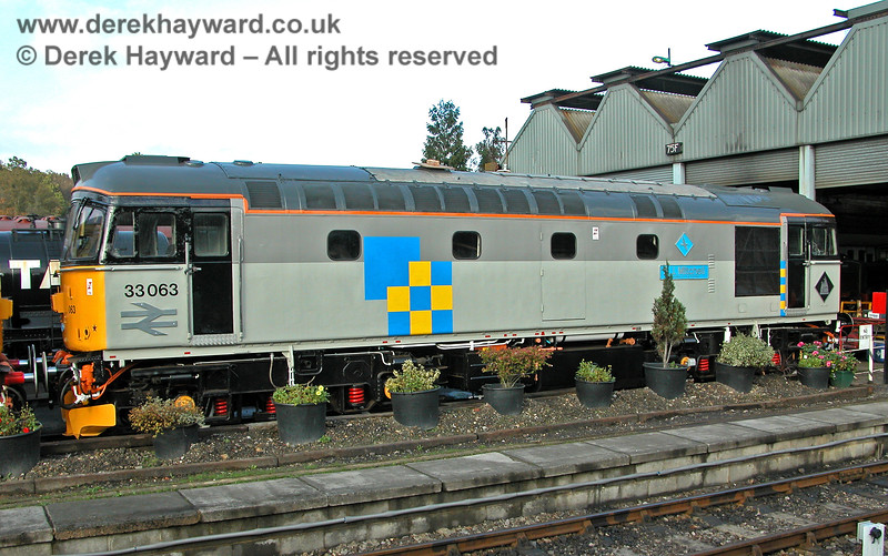 33063 outside Tunbridge Wells shed and with the advantage of a floral display.  29.10.2005