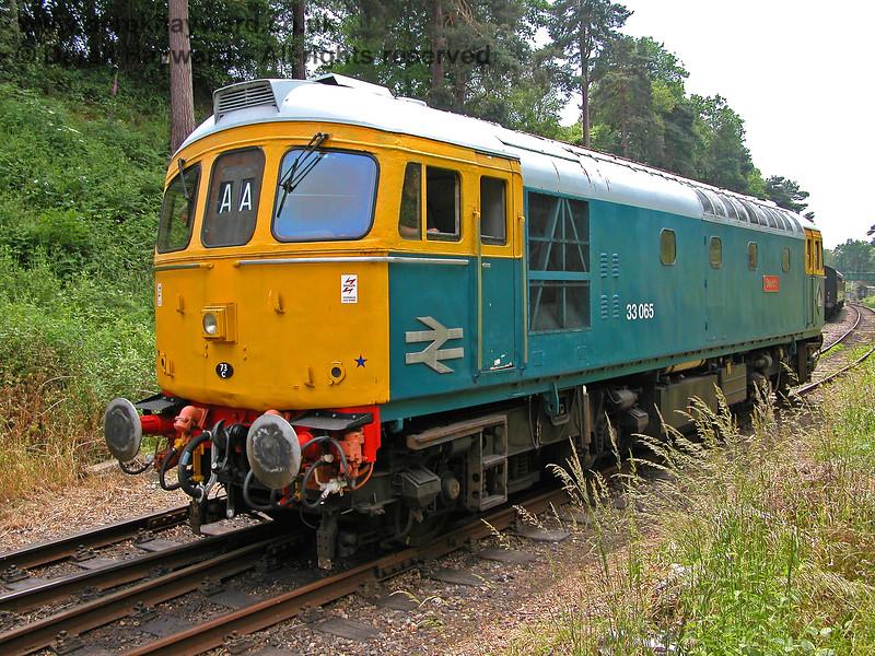 33065 Sealion running round at Groombridge. 18.06.2006