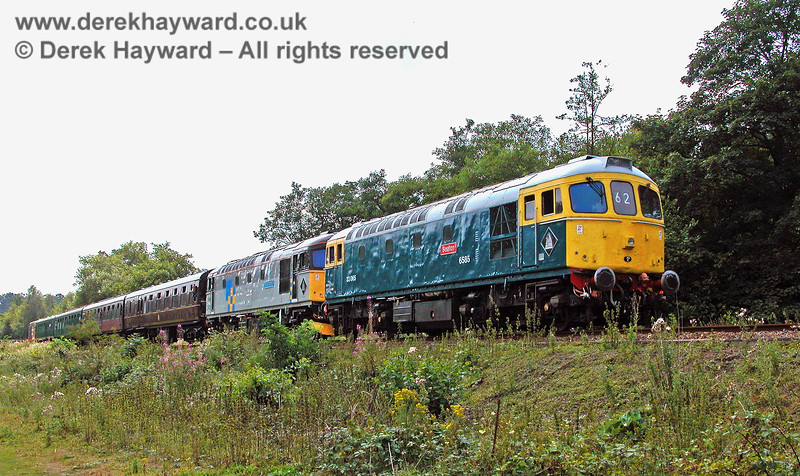 33063 and 33065 and 20118 (trailing) at Birchden having worked to what was then the end of the line. 05.08.2006