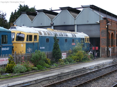Class 33 no. 33065 in the yard